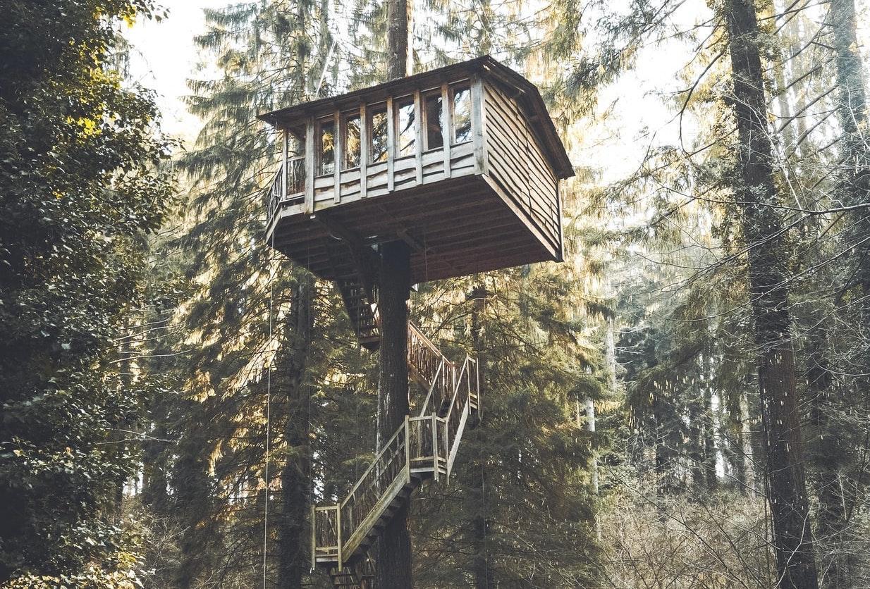 Prenez de la hauteur avec les cabanes dans les arbres