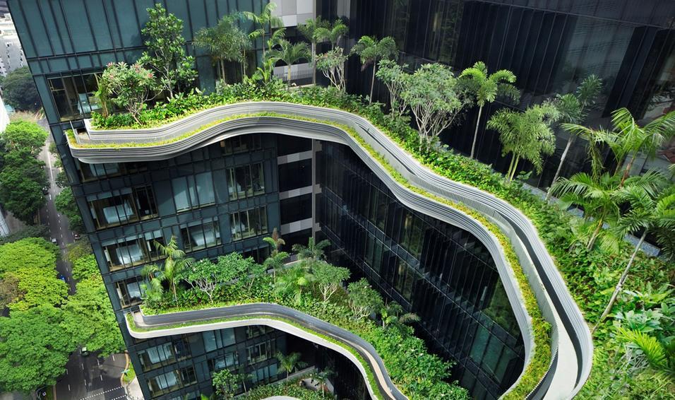 Quand la nature et l'immobilier s'entremêlent
