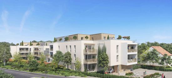 Appartement Cour Saint-Louis